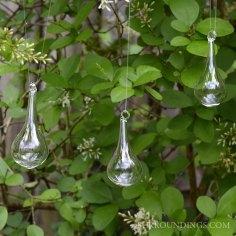 dewdrops031